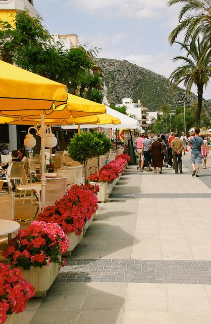 Port de Pollenca Cafe Flowers